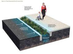 Green Streets Design Manual | Philadelphia Water Department