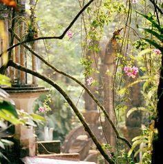Destinos de fin de semana pueblos magicos en Mexico: Xilitla, en la Huasteca Potosina