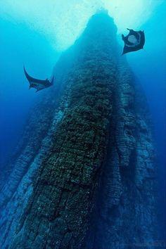 Roca Partida en las Islas Revillagigedo, México (Norbert Probst).