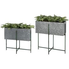 Industrial Raised Rectangle Metal Plant Pot - On Stand Potted Plants, Indoor Plants, Rectangular Planters, Small Shrubs, Rustic Shabby Chic, Minimalist Furniture, Large Furniture, Antique Shops, Faux Flowers