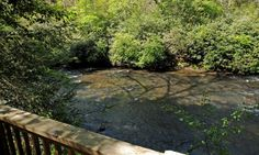 Could you get ANY closer to the river?   Ellijay River.  Sliding Rock Cabins.  River's Reach.