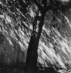 Чёрно-белые фотографии японского мастера Иссей Суда.(Issei Suda / 須 田 一 政)
