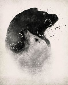 The negative space in this picture is used to show two bears fighting close to each other