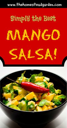 This mango salsa recipe is a spicy but sweet salsa that will make your taste buds happy all day long. Healthy Side Dishes, Side Dish Recipes, Healthy Snacks, Healthy Eating, Healthy Recipes, Raw Recipes, Mexican Food Recipes, Whole Food Recipes, Snack Recipes