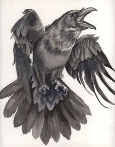 Viking Symbol: Viking Raven Symbol Meaning Raven symbol is mainly attributed to. - Viking Symbol: Viking Raven Symbol Meaning Raven symbol is mainly attributed to the close connecti - The Raven, Raven Bird, Crow Art, Bird Art, Black Tattoos, Body Art Tattoos, Fox Tattoos, Tree Tattoos, Deer Tattoo