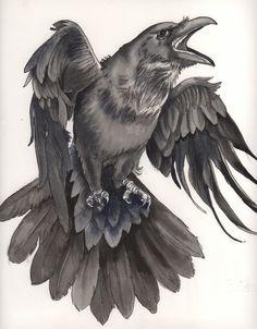 raven+scan1+copy.jpg (1000×1280)