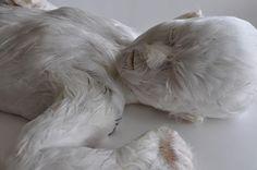 Lucy Glendinning - feather child