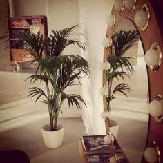 READY TO DISCOVER HOW YOUR HAIR LOOKS? #fashionblog #looktheday #lookbook #outfit #itgirl #toppic #instagrampic #bestpic #streetstyle #beauty #recogido #blogera #recollit #bcn #Barcelona #blogdebelleza #skincare #look #hairsalon #Peluqueria #perruqueria #Ilovemyjob #haircut #kerastase #KerastaseParis #kerastaseUsa #vintage #style #decoration