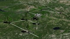 Could Drones Plant Billions of Trees Around the World to Combat Deforestation?
