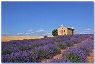 Chapelle Notre-Dame de lAssomption - Entrevennes (Alpes-de-Haute-Provence)
