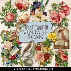 Far Far Hill: Freebies Vintage Flowers Illustrations