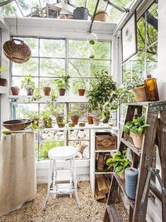 Gardeners turn to mini greenhouse gardening when they need to create a specific microclimate or lack space for a larger. the Mini greenhouse can be used for protected crops such as tomatoes, peppers, cucumbers and aubergines. Diy Greenhouse Plans, Window Greenhouse, Lean To Greenhouse, Outdoor Greenhouse, Cheap Greenhouse, Greenhouse Wedding, Greenhouse Gardening, Portable Greenhouse, Homemade Greenhouse