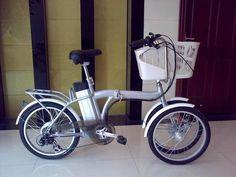 Resultado de imagen para electric tricycle for adults