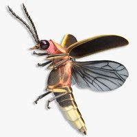 Tis the season  Lampyridae is a family of insects in the beetle     FireFly Bug Flying Pose