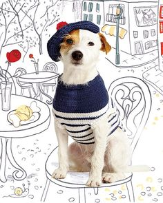 Debbie Bliss Knitting Patterns For Dogs : 1000+ images about Dogs Knitwear on Pinterest Dog ...