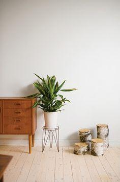 vintage + plant wonderfull