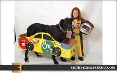 This kid and her dog have the best #NASCAR costume, excluding the Kyle Busch #18 fact