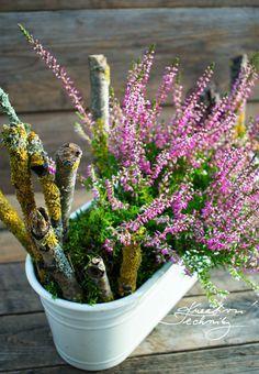 Hygge, Fall Decor, Autumn, Seasons, Creative, Plants, Diy, Design, Home Decor