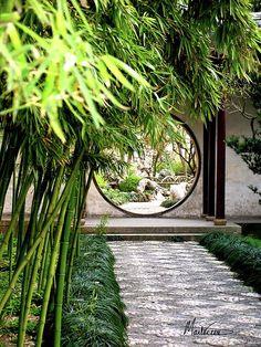 """Suzhou Bamboo Gardens""  Suzhou , China   photograph by Marti Green"