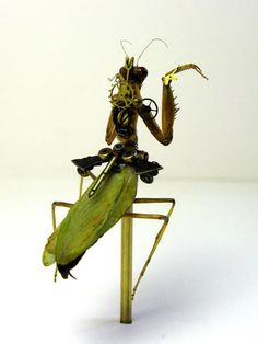 Mike Libby creates awesome Steampunk insects using old watch mechanisms and dead, intact insects