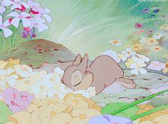 my gifs mine disney flowers animation disney gif bambi bunny rabbit disney gifs disney classics Classic Disney thumper