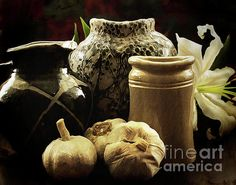 Still Life Photographers, Make Pictures, Types Of Photography, Design Elements, Lily, Vase, Wall Art, Elements Of Design, Orchids
