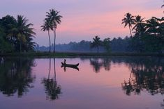 16 Top Places to Visit in Kerala