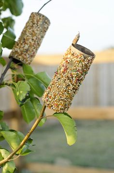 Sugar and Grace breaks this classic, easy birdfeeder down: TP rolls covered with PB and rolled in birdseed. Place roll over branch, await birds. (Remember to keep feeding birds once you start!)