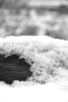 photo by Fantastic Flash #blackandwhite #photography #snow #fotografia