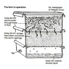 a cross-section diagram showing a worm farm operation    explains vertical and horizontal operation.