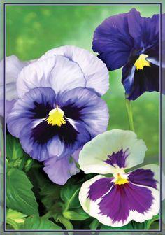 Fancy Pansies Garden Flag by Premier Designs 51828
