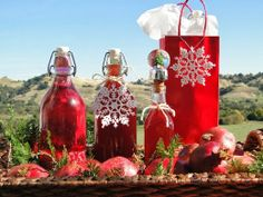 ...a quiet life...: the novel bakers present... Nigella Christmas & Pomegranate infused Vodka