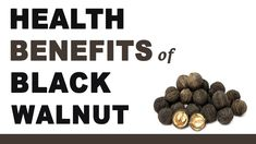 Black Walnuts - 7 Amazing Health Benefits Of It! However, If You Have Any Serious Problem Consulting With A Doctor Is Always Recomme. Health And Fitness Articles, Health Tips, Health Fitness, Black Walnut Benefits, Health Benefits Of Walnuts, Mineral Nutrition, Black Walnut Tree, Dog Food Recipes, Healthy Recipes