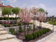 Projektowanie ogrodów Kielce, realizacja ogrodów,terenów zieleni,nawodnienia #1