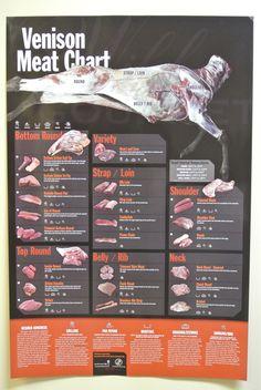 Venison Meat Chart http://riflescopescenter.com/category/nikon-riflescope-reviews/