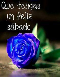 ♥FELIZ SÁBADO!!! http://frases-conimagenes.blogspot.com.ar/2012/10/feliz-sabado.html