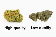 How to Identify Top Shelf Weed | Best Weed Containers | Marijuana ...