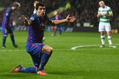 Barcelona's Uruguayan striker Luis Suarez reacts during the UEFA Champions League group C football match between Celtic and Barcelona at Celtic Park in Glasgow on November 23, 2016. / AFP / Paul ELLIS