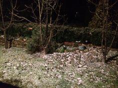 #snowing #winter #lidsvagas