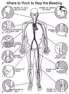 medical ref for nitro.