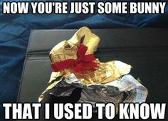 Some bunny I used to know easter easter quotes easter images easter quote happy easter happy easter. easter pictures funny easter quotes happy easter quotes quotes for easter easter memes Some bunny I used to know images funny Happy Easter Meme, Funny Easter Memes, Chocolate Meme, Chocolate Bunny, Lindt Chocolate, Easter Pictures, Funny Pictures, Reaction Pictures, Funny Pics
