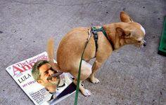 Sofá de Pobre: Lula terá de engolir o Ego impõem PT.