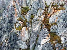 Granite rock, Lomnicky Stit Mt, High Tatra Mts, Slovakia