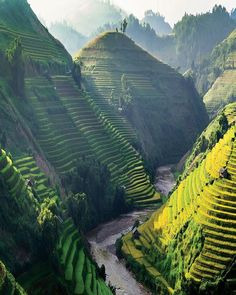 Cant help but wonder if Dr. Seuss ever visited Mu Cang Chai  See #Vietnams terraced rice fields for yourself!