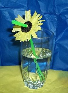 sunflower straws for n/a drinks