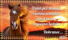 Horses, Movie Posters, Animals, Google, Polish, Animales, Animaux, Film Poster, Animal