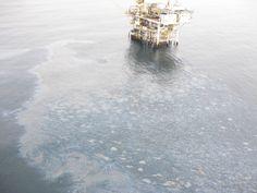 Possible Oil Spill off Goleta Beach - Edhat Real News - Santa Barbara Edhat