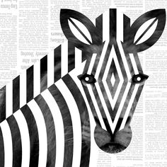 Scott Partridge - illustration - zebra