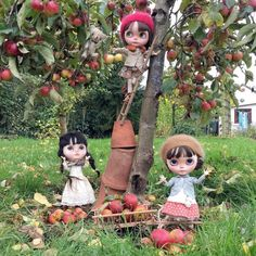 """""""Come on Ted, shake the branches harder! We need more apples more!"""" 