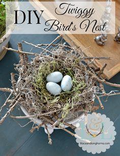 Best of DIY Party – {DIY Twiggy Bird's Nest}   http://www.lilacsandlonghorns.com/best-of-diy-party-twiggy-birds-nest.html